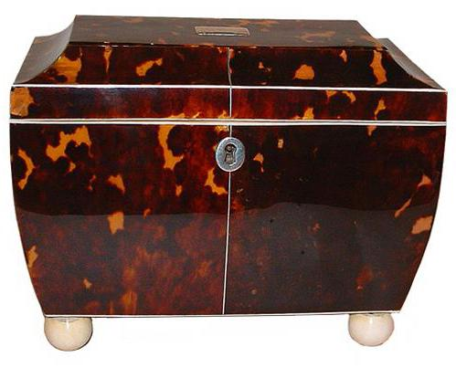 A Sophisticated First Quarter 19th Century English Regency Casket-Shaped Tortoiseshell Tea Caddy No. 2538