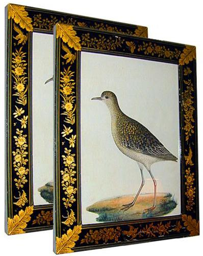 A Pair of 19th Century Levantine Watercolors of Birds in Lacquer Frames No. 376
