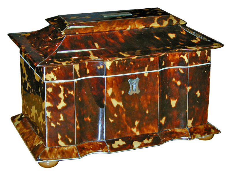 A 19th Century English Tortoiseshell Tea Caddy in a Rare Form No. 1909